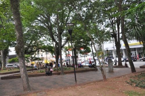 Homem é preso após espancar filhote de cachorro na Praça do Bosque